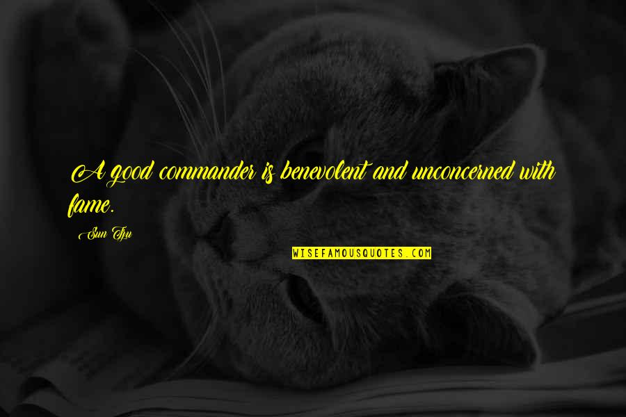 Benevolent Quotes By Sun Tzu: A good commander is benevolent and unconcerned with