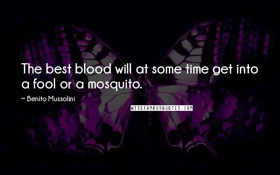 Benito Mussolini quotes: The best blood will at some time get into a fool or a mosquito.