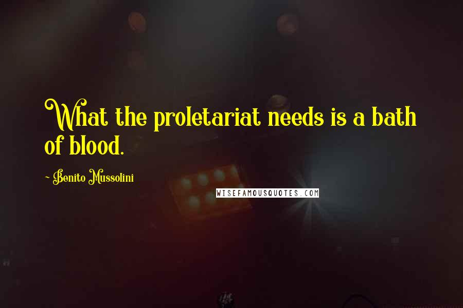 Benito Mussolini quotes: What the proletariat needs is a bath of blood.