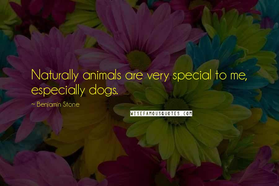Benjamin Stone quotes: Naturally animals are very special to me, especially dogs.