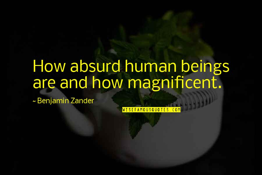 Benjamin Zander The Art Of Possibility Quotes By Benjamin Zander: How absurd human beings are and how magnificent.