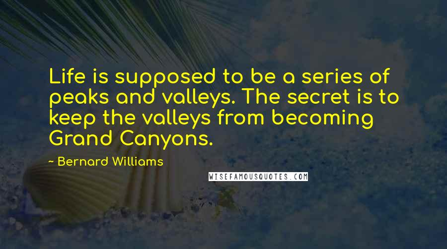 Bernard Williams quotes: Life is supposed to be a series of peaks and valleys. The secret is to keep the valleys from becoming Grand Canyons.