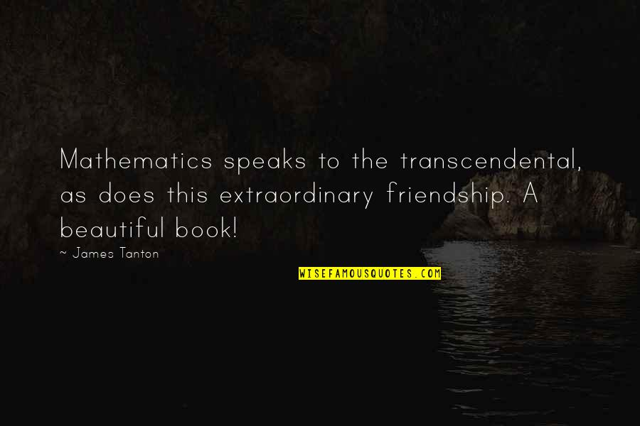 Best Book Of James Quotes By James Tanton: Mathematics speaks to the transcendental, as does this