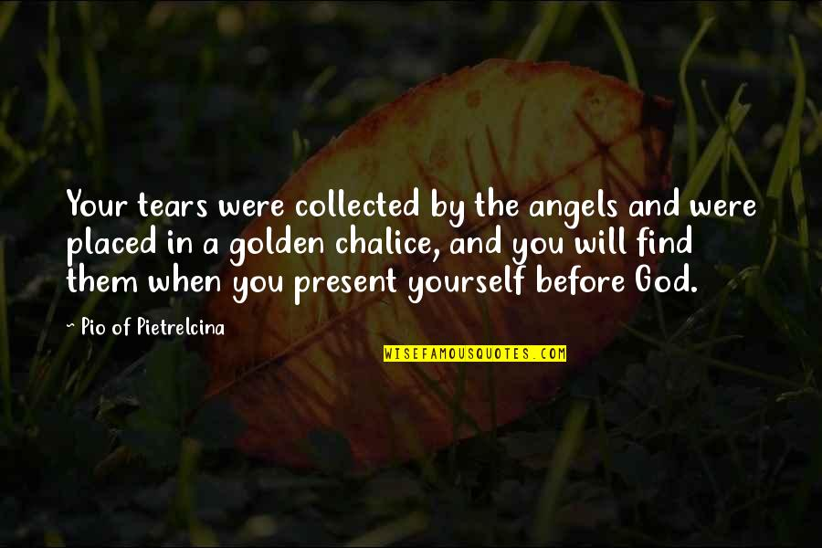 Best Collected Quotes By Pio Of Pietrelcina: Your tears were collected by the angels and