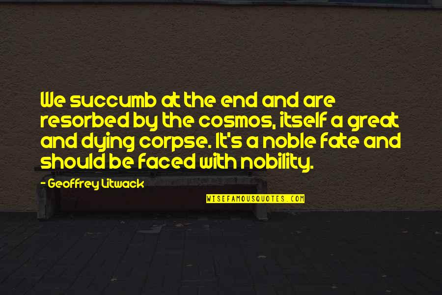 Best Cosmos Quotes By Geoffrey Litwack: We succumb at the end and are resorbed