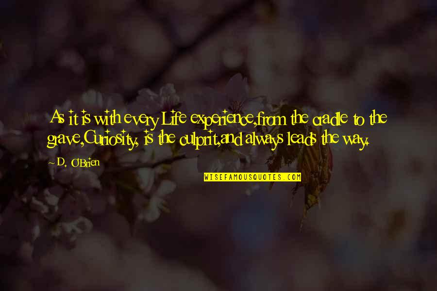 Best Culprit Quotes By D. O'Brien: As it is with every Life experience,from the