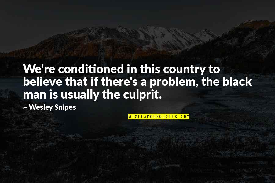Best Culprit Quotes By Wesley Snipes: We're conditioned in this country to believe that