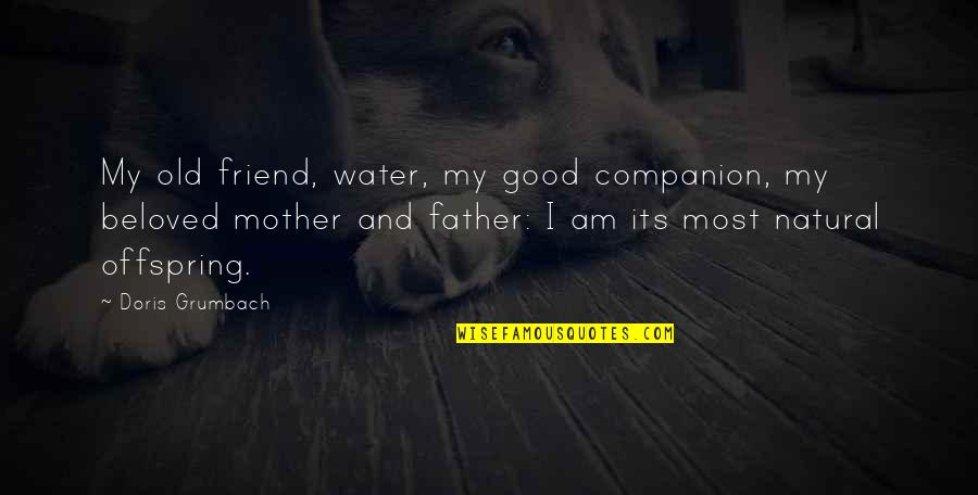 Best Friend Companion Quotes By Doris Grumbach: My old friend, water, my good companion, my
