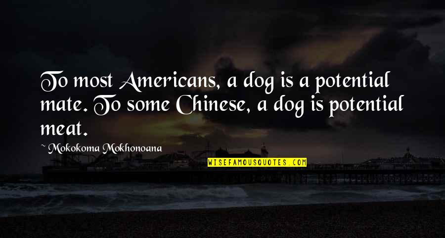 Best Friend Companion Quotes By Mokokoma Mokhonoana: To most Americans, a dog is a potential