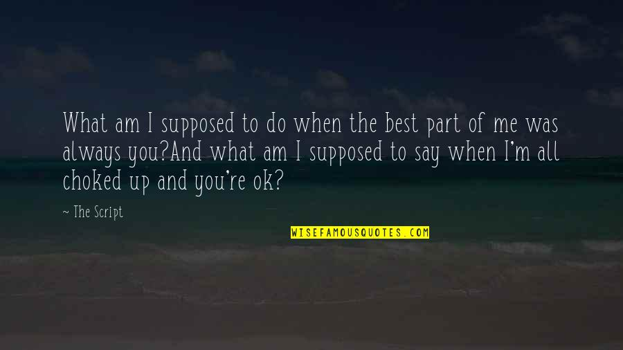 Best Life And Love Quotes By The Script: What am I supposed to do when the