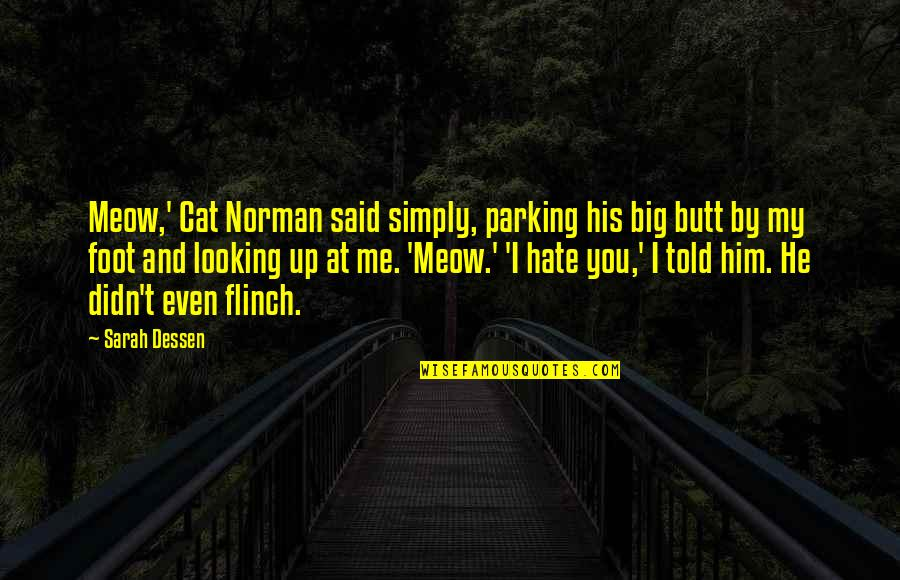 Best Meow Quotes By Sarah Dessen: Meow,' Cat Norman said simply, parking his big