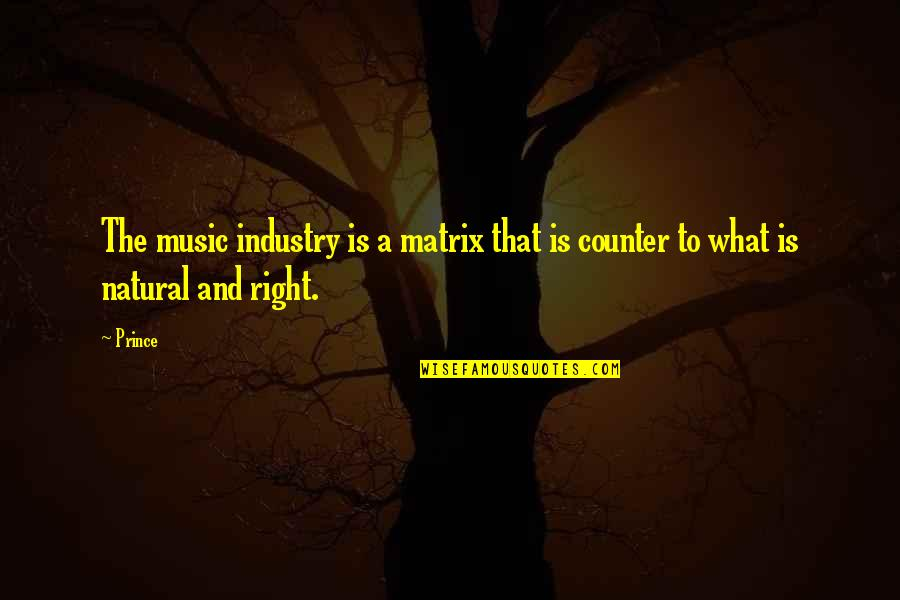 Best Music Industry Quotes By Prince: The music industry is a matrix that is