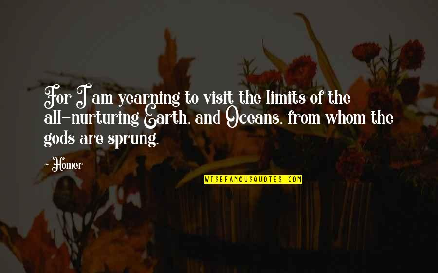 Best Oceans Quotes By Homer: For I am yearning to visit the limits