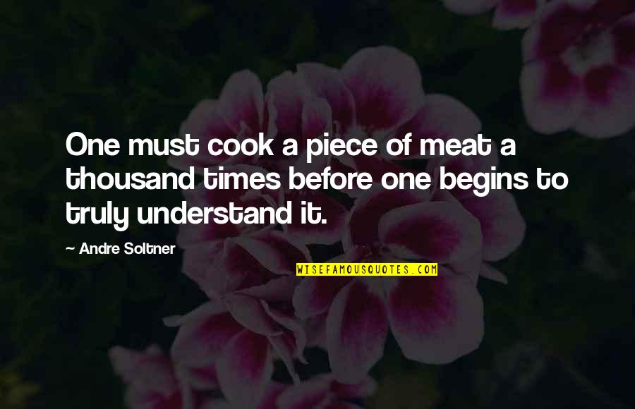 Best One Piece Quotes By Andre Soltner: One must cook a piece of meat a