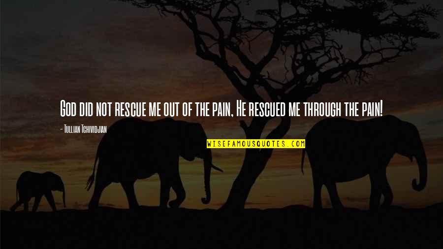 Best Rescue Me Quotes By Tullian Tchividjian: God did not rescue me out of the