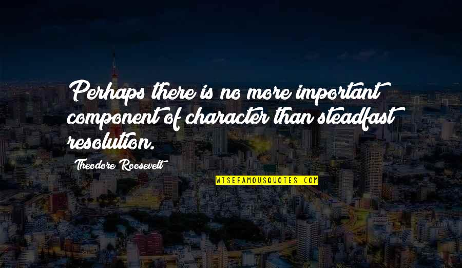 Best Resolution Quotes By Theodore Roosevelt: Perhaps there is no more important component of