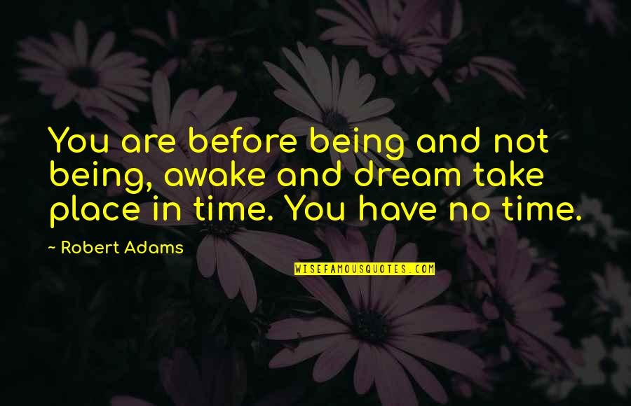 Best Robert Adams Quotes By Robert Adams: You are before being and not being, awake