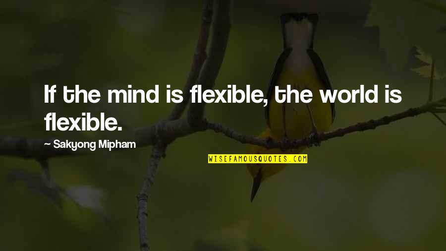 Best Seahawks Quotes By Sakyong Mipham: If the mind is flexible, the world is
