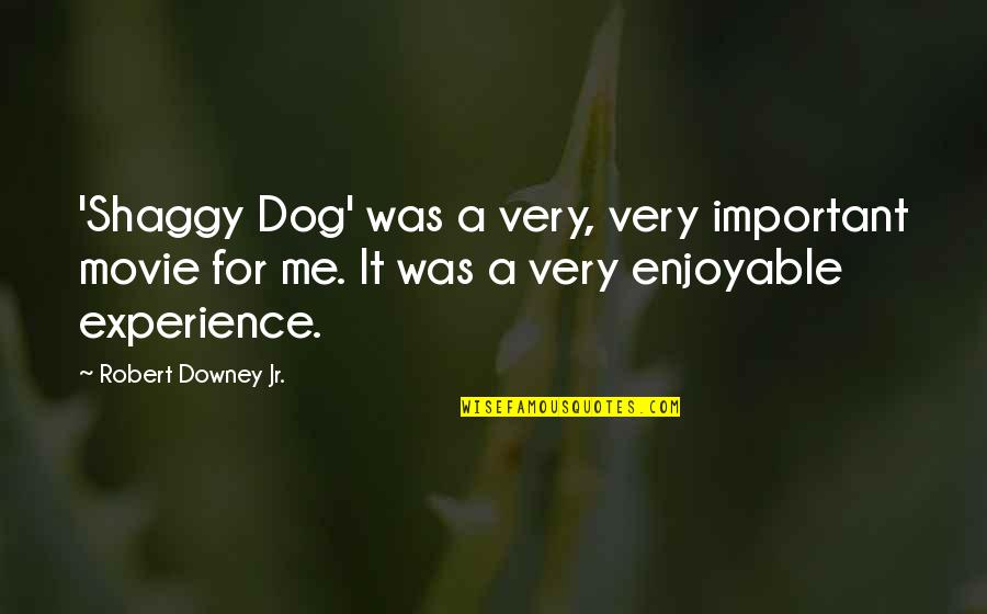 Best Shaggy Quotes By Robert Downey Jr.: 'Shaggy Dog' was a very, very important movie