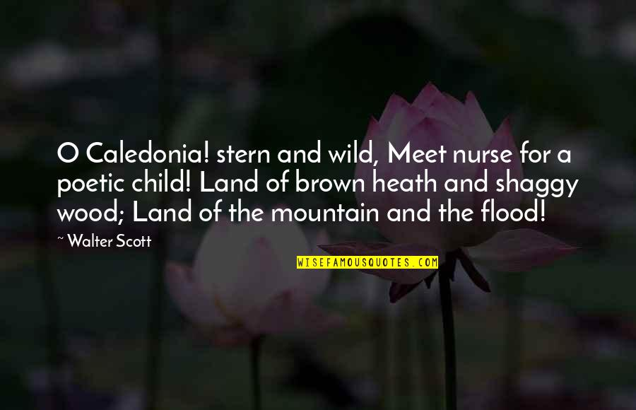 Best Shaggy Quotes By Walter Scott: O Caledonia! stern and wild, Meet nurse for