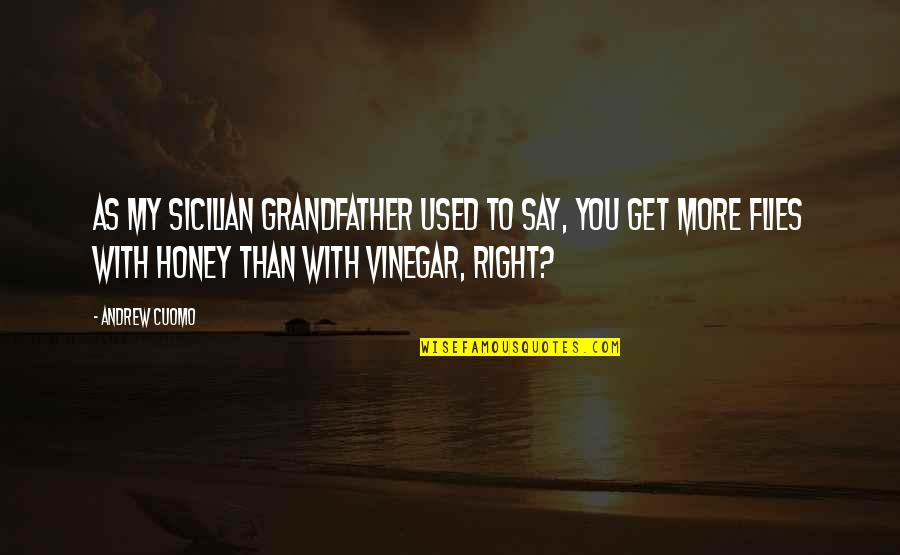 Best Sicilian Quotes By Andrew Cuomo: As my Sicilian grandfather used to say, you