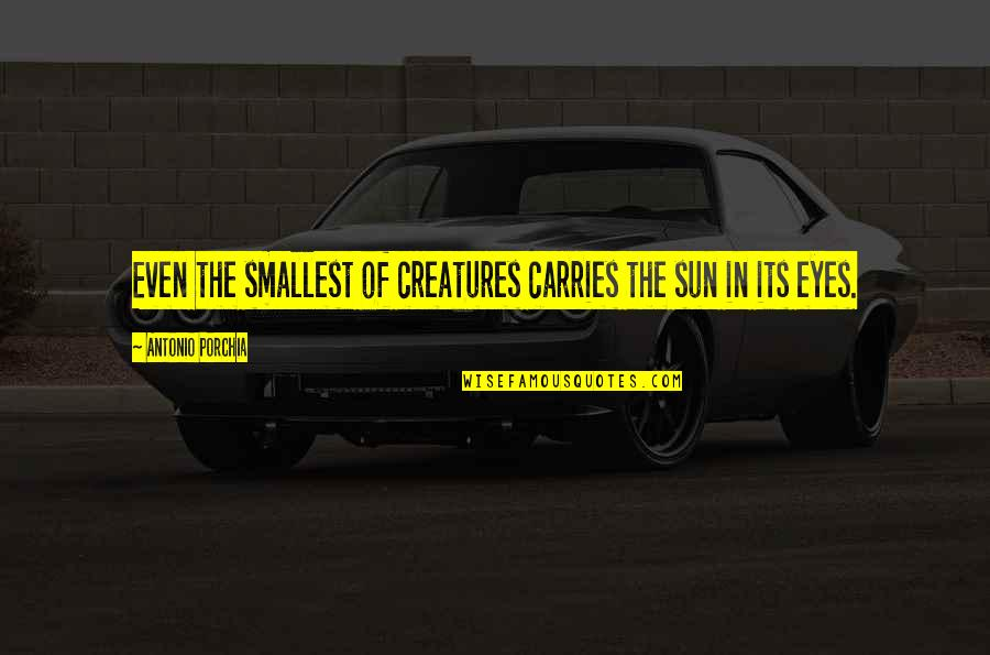 Best Smallest Quotes By Antonio Porchia: Even the smallest of creatures carries the sun