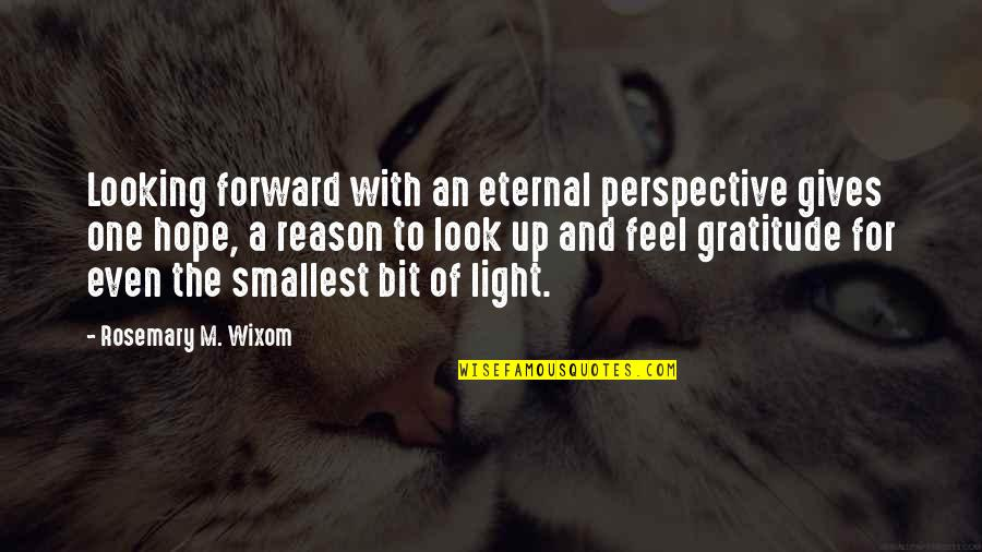 Best Smallest Quotes By Rosemary M. Wixom: Looking forward with an eternal perspective gives one