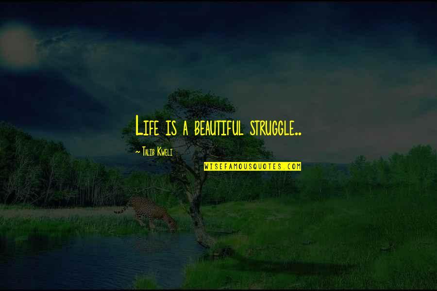 Best Talib Kweli Quotes By Talib Kweli: Life is a beautiful struggle..