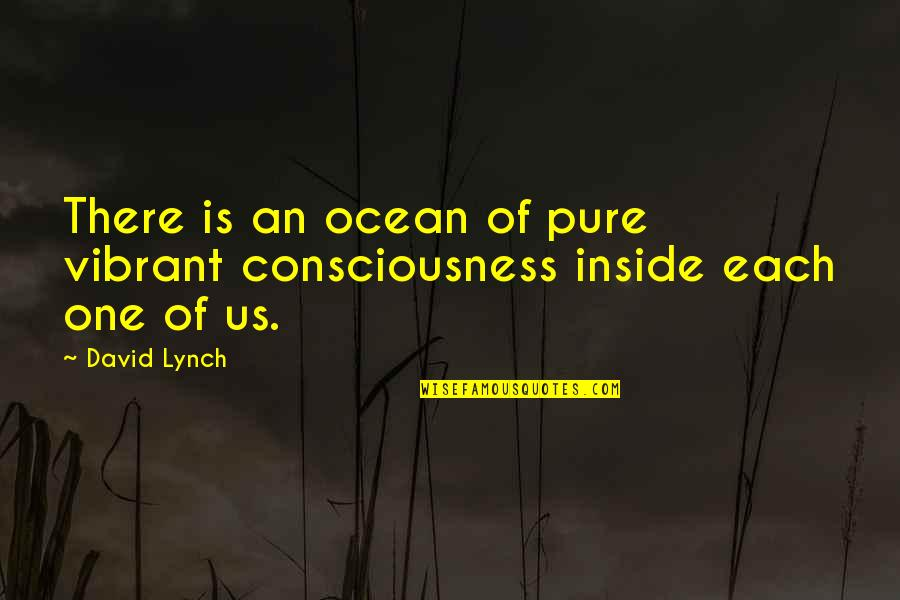 Best Ted Talk Quotes By David Lynch: There is an ocean of pure vibrant consciousness