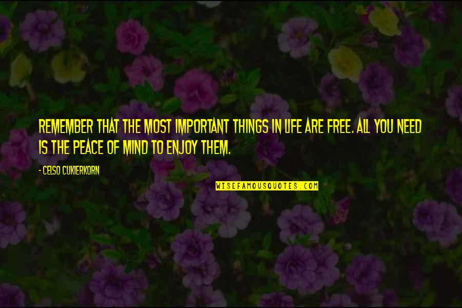 Best Things In Life Are Free Quotes By Celso Cukierkorn: Remember that the most important things in life