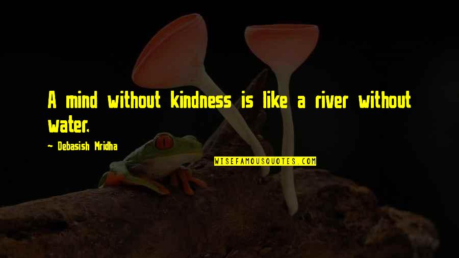 Beth Revis Leadership Quotes By Debasish Mridha: A mind without kindness is like a river