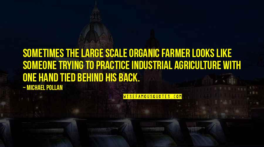 Bhagavat Quotes By Michael Pollan: Sometimes the large scale organic farmer looks like