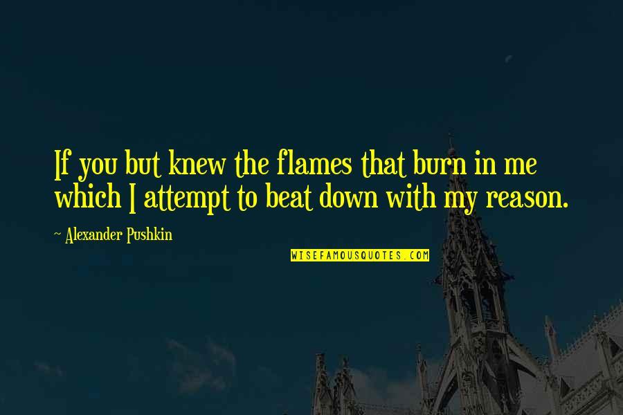 Bibi Fatima Zahra Quotes By Alexander Pushkin: If you but knew the flames that burn