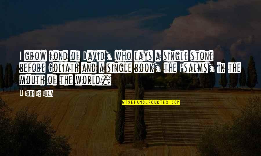 Bible Book Of Psalms Quotes By Erri De Luca: I grow fond of David, who lays a