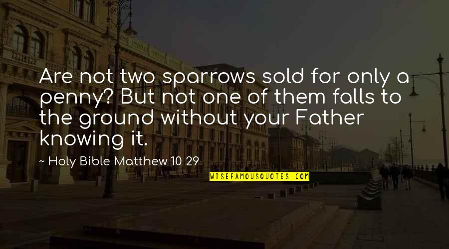 Bible God Love Quotes By Holy Bible Matthew 10 29: Are not two sparrows sold for only a