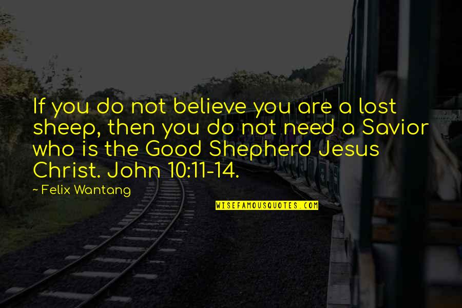 Bible Shepherd Quotes By Felix Wantang: If you do not believe you are a