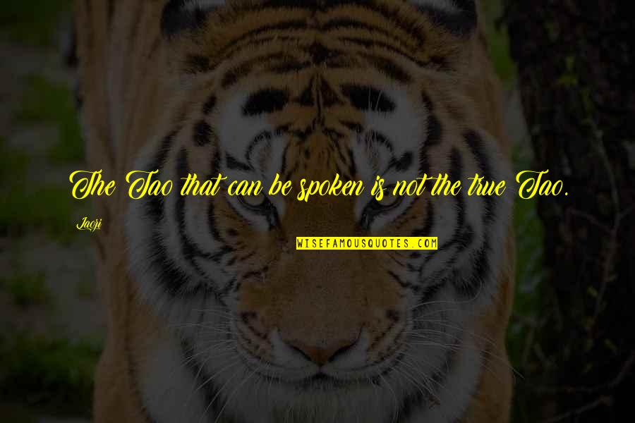 Bible Shepherd Quotes By Laozi: The Tao that can be spoken is not