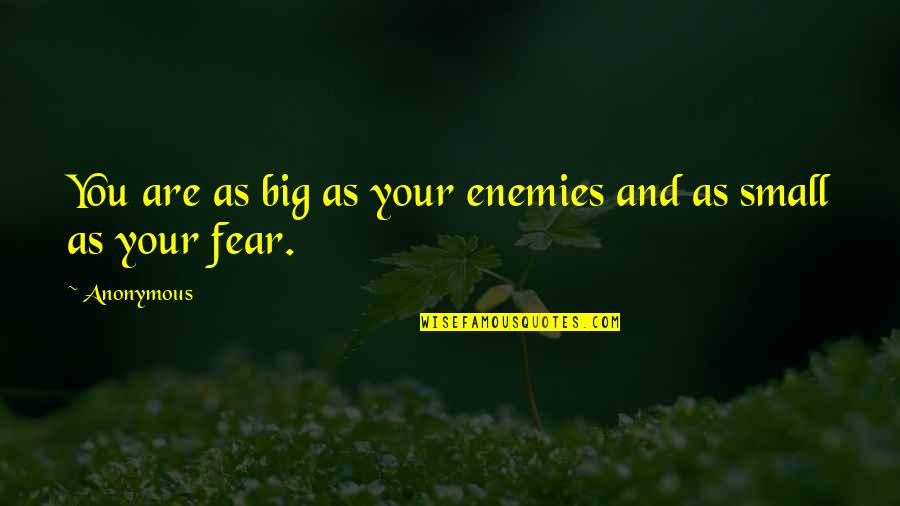 Big And Small Quotes By Anonymous: You are as big as your enemies and