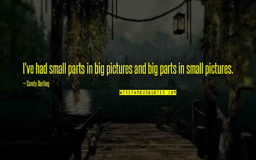 Big And Small Quotes By Candy Darling: I've had small parts in big pictures and