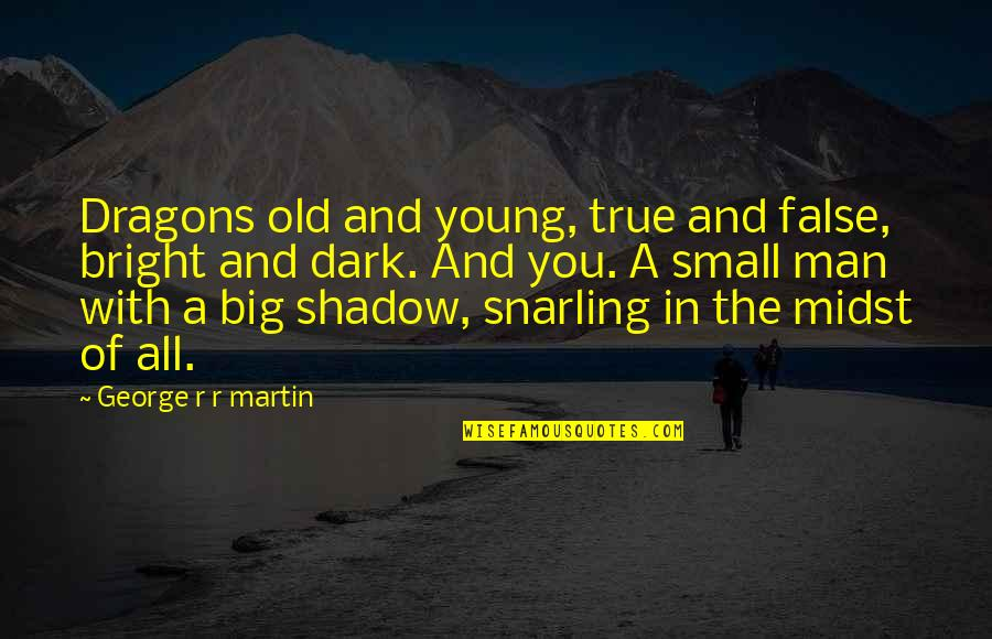 Big And Small Quotes By George R R Martin: Dragons old and young, true and false, bright