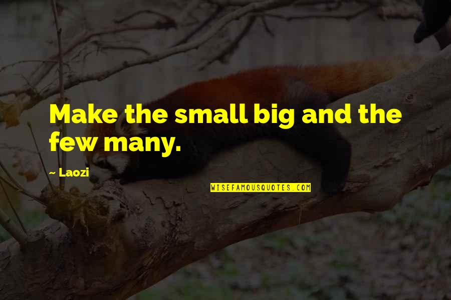 Big And Small Quotes By Laozi: Make the small big and the few many.