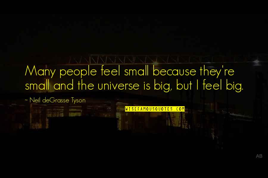 Big And Small Quotes By Neil DeGrasse Tyson: Many people feel small because they're small and