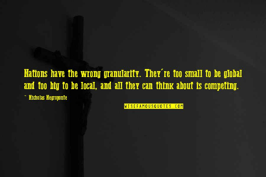 Big And Small Quotes By Nicholas Negroponte: Nations have the wrong granularity. They're too small