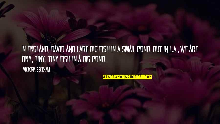 Big And Small Quotes By Victoria Beckham: In England, David and I are big fish