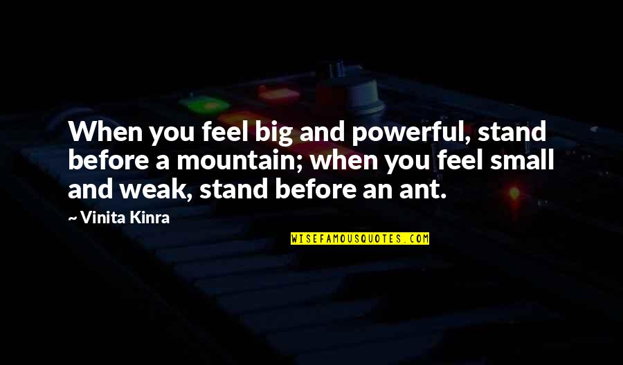 Big And Small Quotes By Vinita Kinra: When you feel big and powerful, stand before