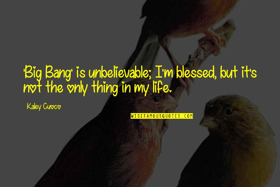 Big Bang G-dragon Quotes By Kaley Cuoco: 'Big Bang' is unbelievable; I'm blessed, but it's