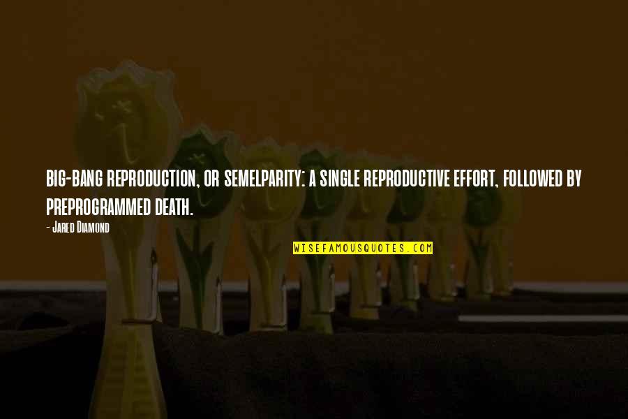 Big Bang Quotes By Jared Diamond: big-bang reproduction, or semelparity: a single reproductive effort,