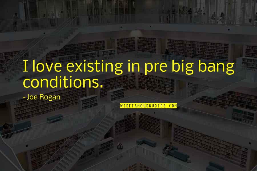 Big Bang Quotes By Joe Rogan: I love existing in pre big bang conditions.