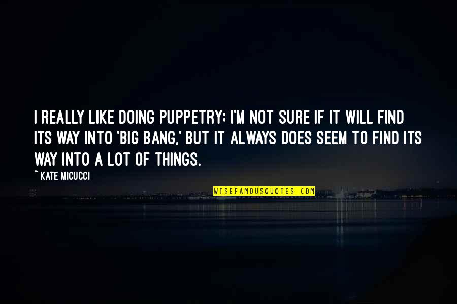 Big Bang Quotes By Kate Micucci: I really like doing puppetry; I'm not sure