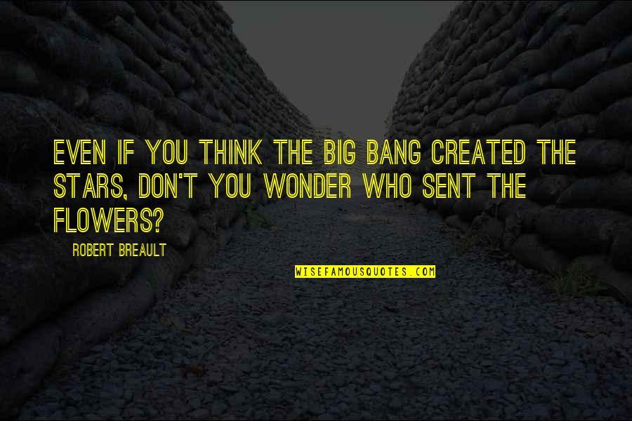 Big Bang Quotes By Robert Breault: Even if you think the Big Bang created